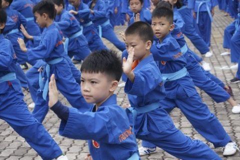 18 Vovinam La Gi Nhung Dieu Can Biet Ve Mon Vo Truyen Thong Viet Nam 1