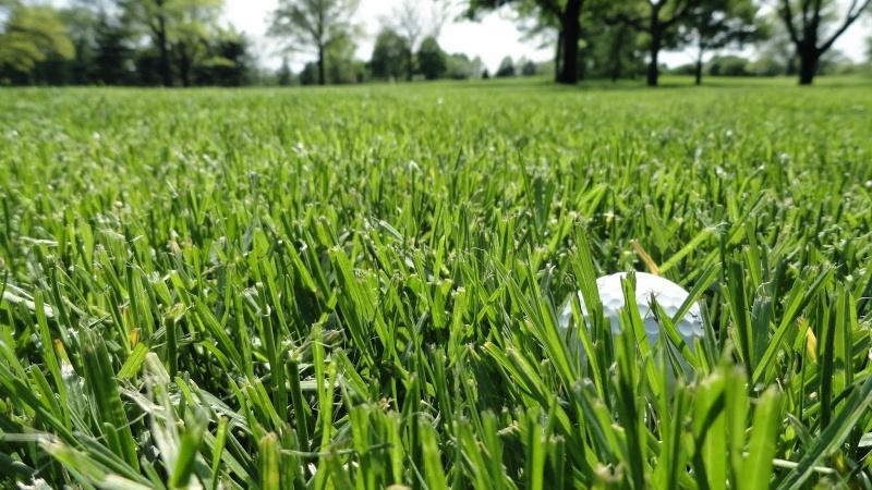 sân tập golf đạt chuẩn quốc tế